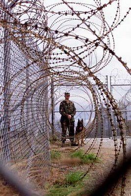 fema-camp-soldier-dog-fence.jpg